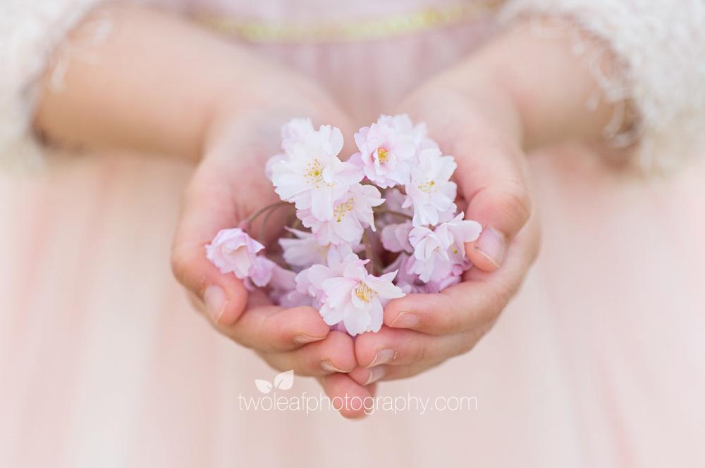 san-jose-baby-photographer-handful