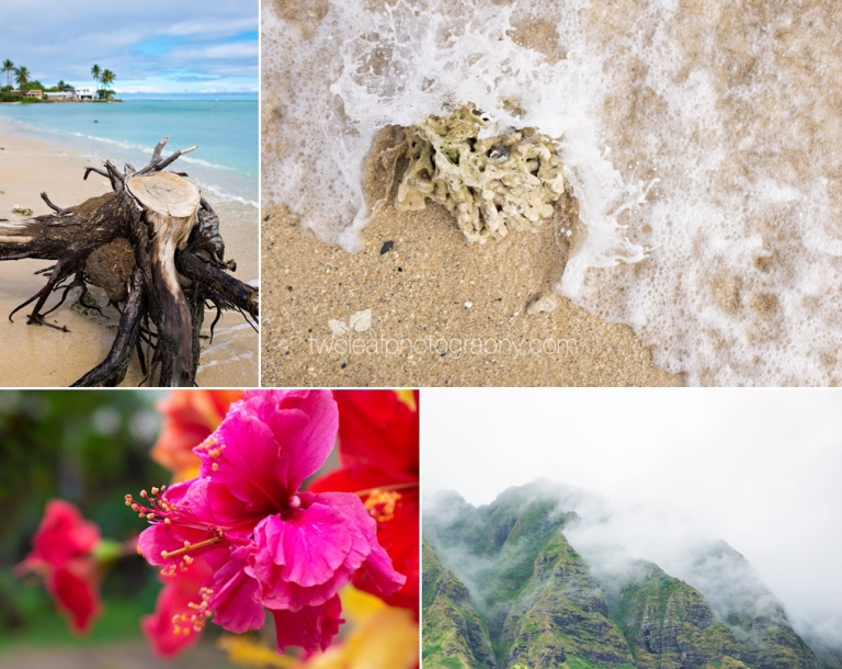 Oahu-Vacation-Photos-Two-Leaf-Photography