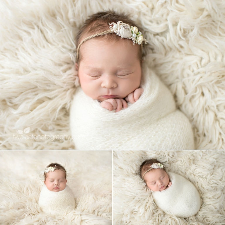 San jose newborn portraits white fur