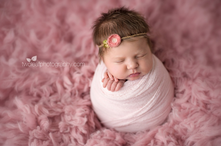 This tiny princess came to my san jose photo studio for her newborn portraits at 13 days new dont you just love her chubby cheeks and head full of