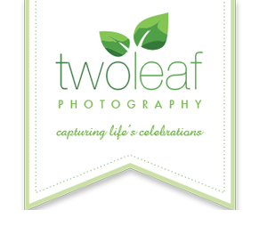 Bay Area Family Photographer | Two Leaf Photography logo